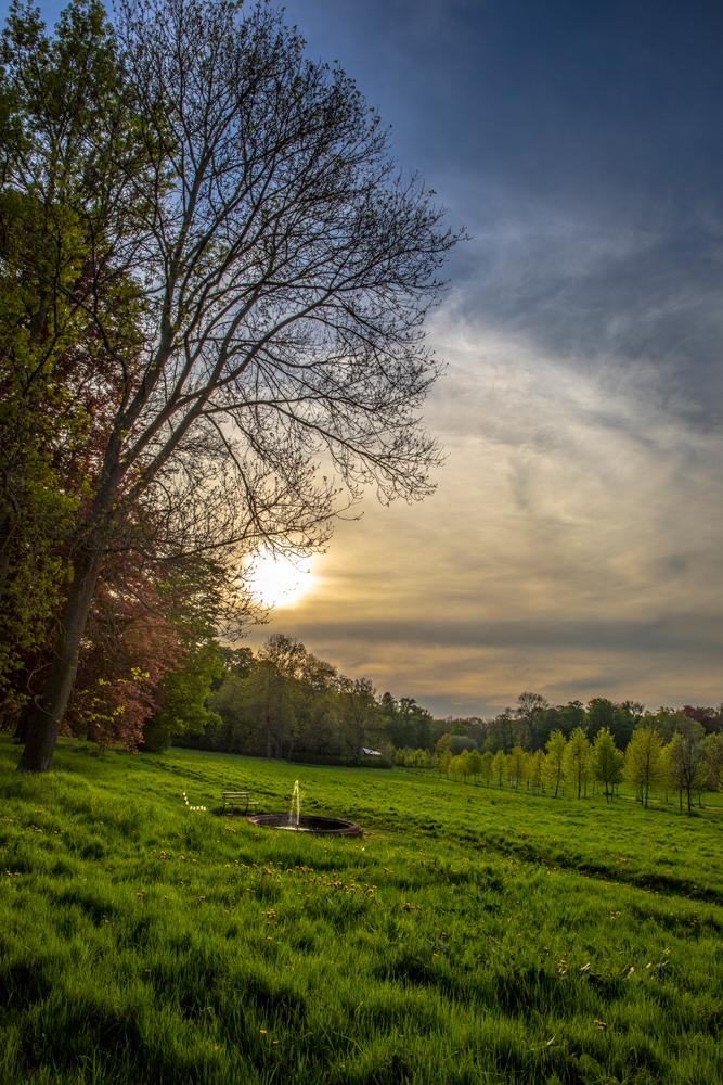 Miris Kyffhäuser-Blog - englischer Garten in Bendeleben