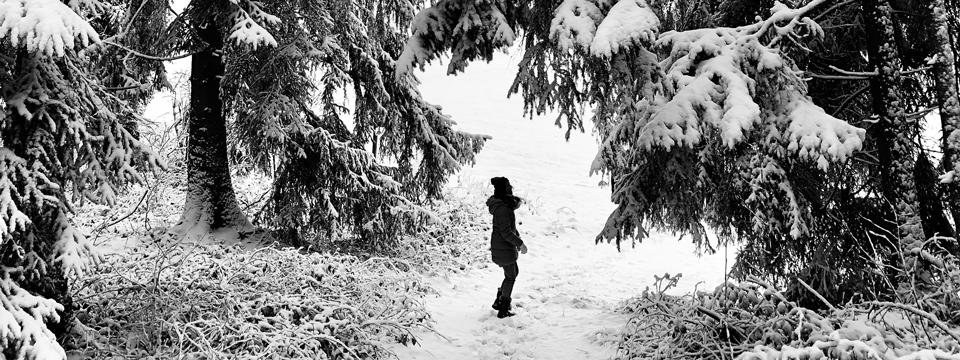Miris Kyffhäuser Blog - Dezember