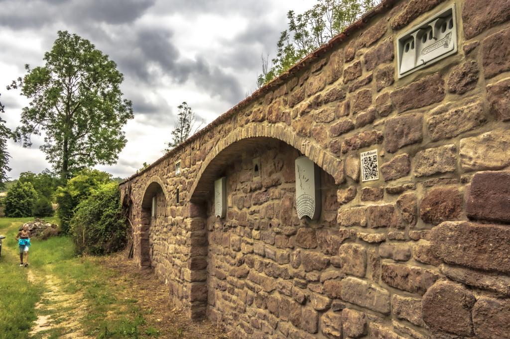 Artenschutzmauer im Bendelebener Park