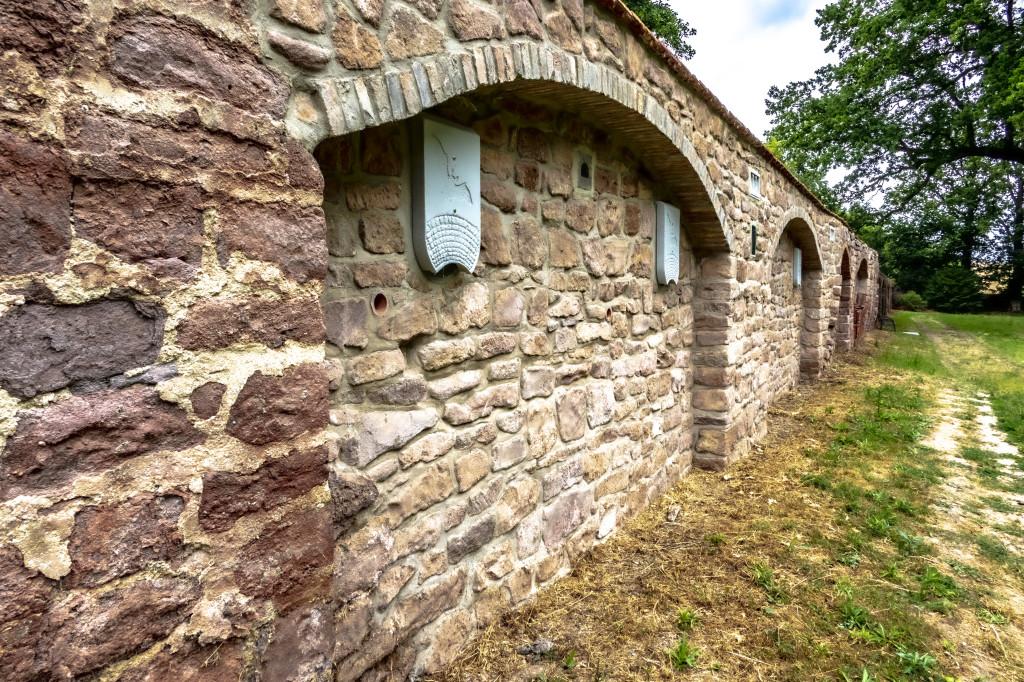 Artenschutzmauer Bendeleber Park