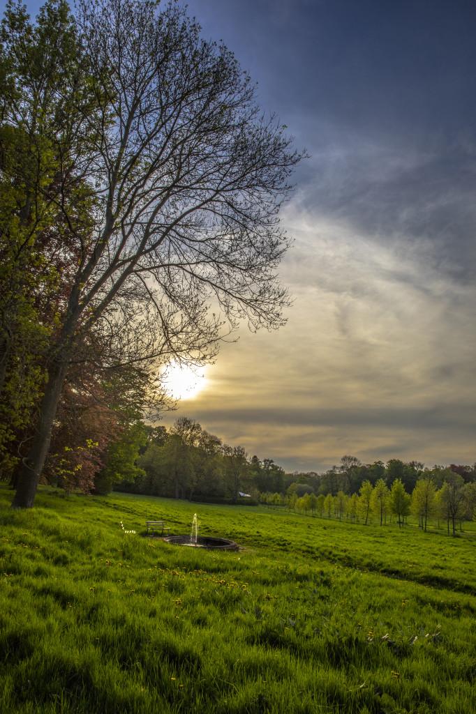 Sonnenuntergang im englischen Garten im Barockdorf Bendeleben
