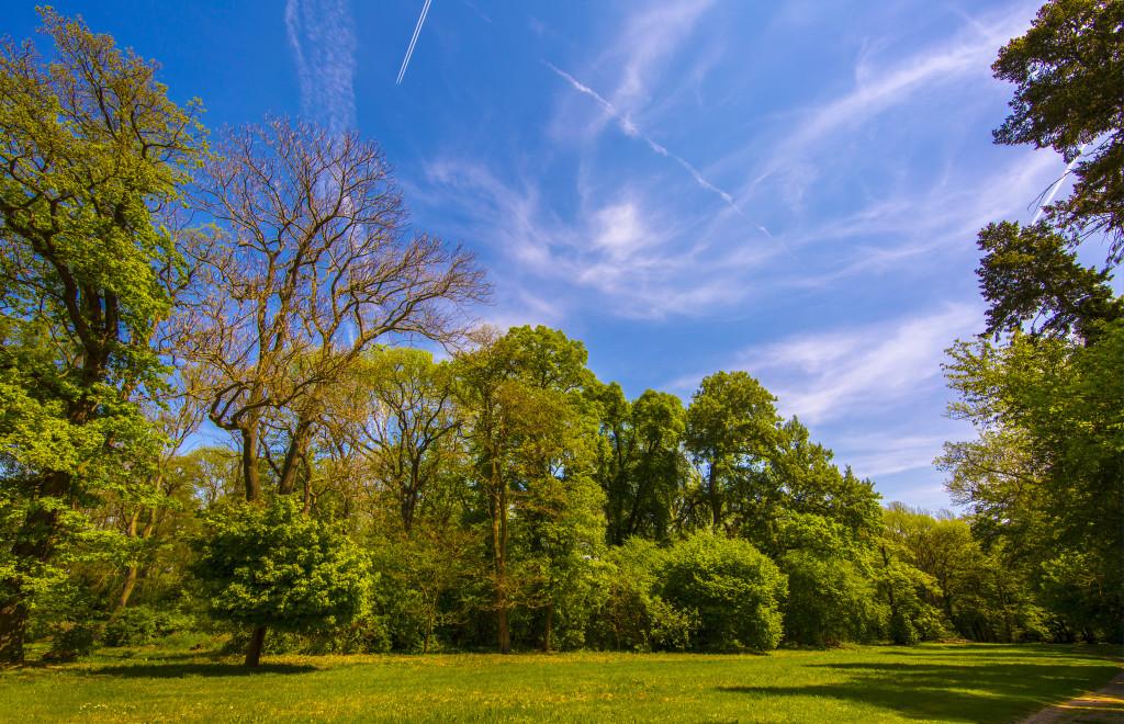 Der älteste englische Garten auf dem europäischen Kontinent im Barockdorf Bendeleben