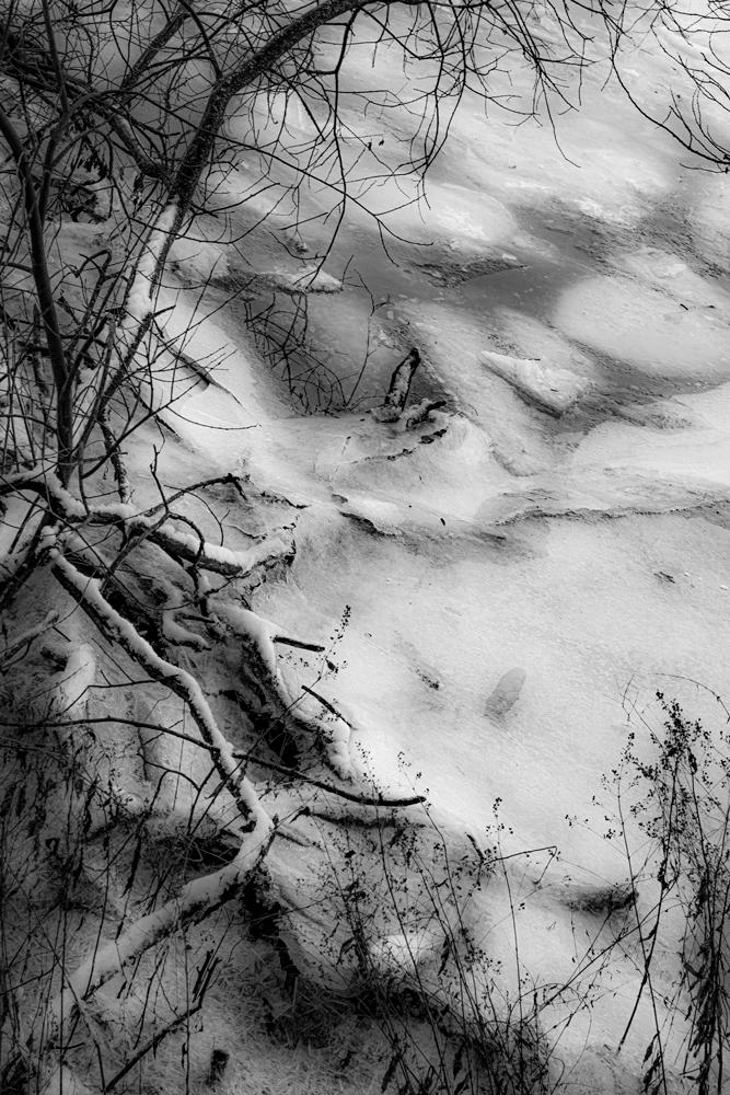 Die Natur kann auch im Winter entdeckt werden.